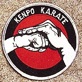 ProForce ® Kenpo Karate Patch